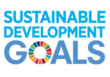 Travel company sustainable development goals