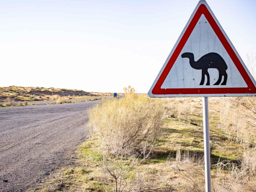 Camel sign in the desert