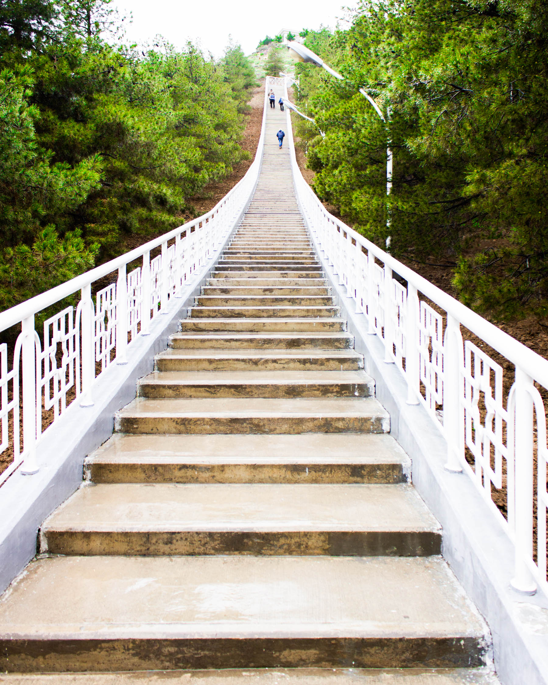 Stairs of Health